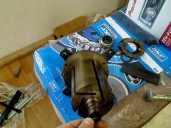 Graphite plates, vanes, blades, slats for vacuum pumps