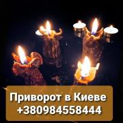 Return the Corruption to the Abuser. Bewitch a Man Kiev. Love Magic